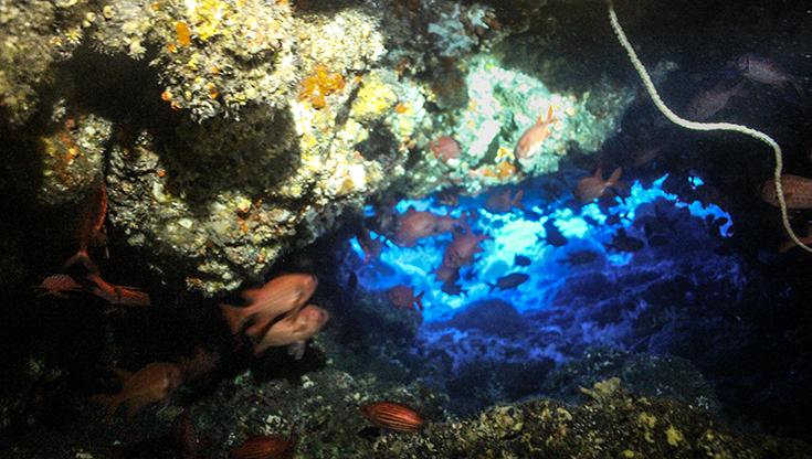 Вход в Le Grottes du portail, дайв-сайт на острове Реюньон