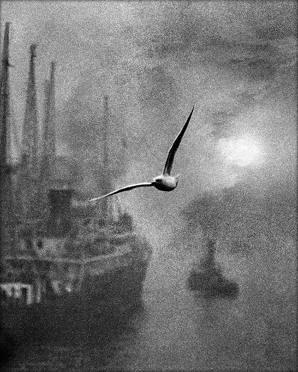 Билл Брандт. Раннее утро на реке, 1930-е годы