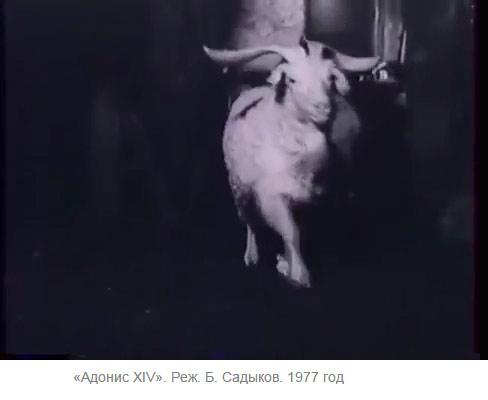 """Кадр из фильма """"Адонис XIV"""" режиссера Бако Садыкова"""
