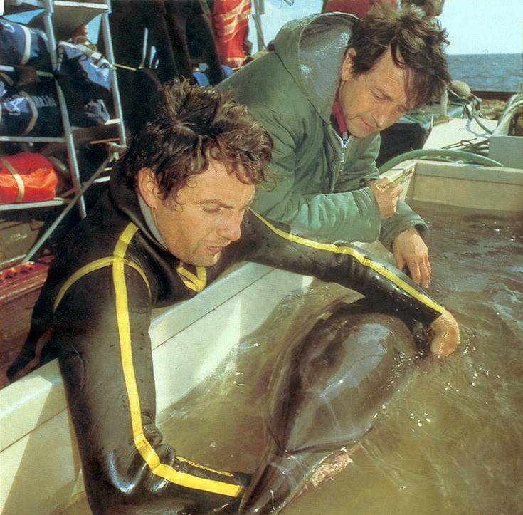 Ив Омер и дельфин