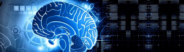 Nectome - компания, готовая заняться оцифровкой сознания